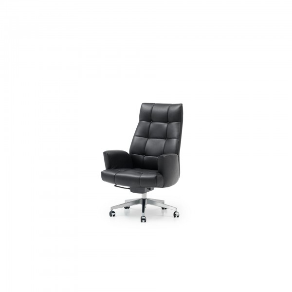 DS-257 /11 chair - Image 1