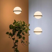 Palma pendant light
