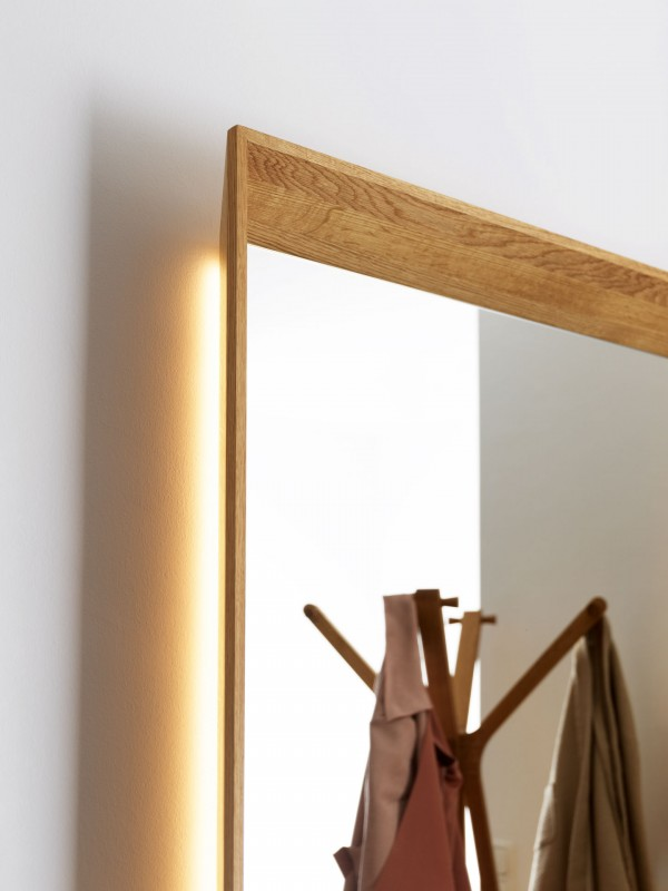 Haiku Framed Mirror Panel with Clothes Rail with Key Dish - Image 2