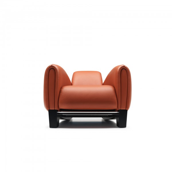 DS-57 armchair - Image 2