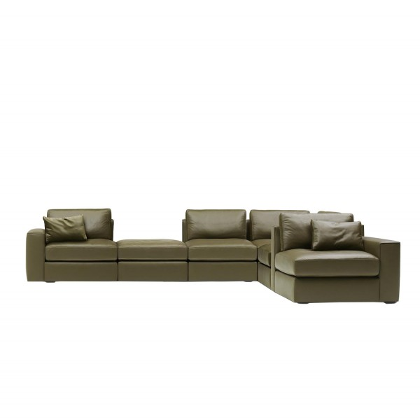 DS-247 sofa sectional - Lifestyle