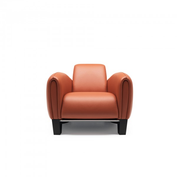 DS-57 armchair - Image 1