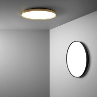 Compendium Plate wall and ceiling light