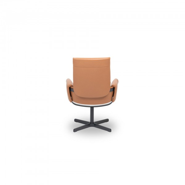 DS-343 /21 chair - Image 3