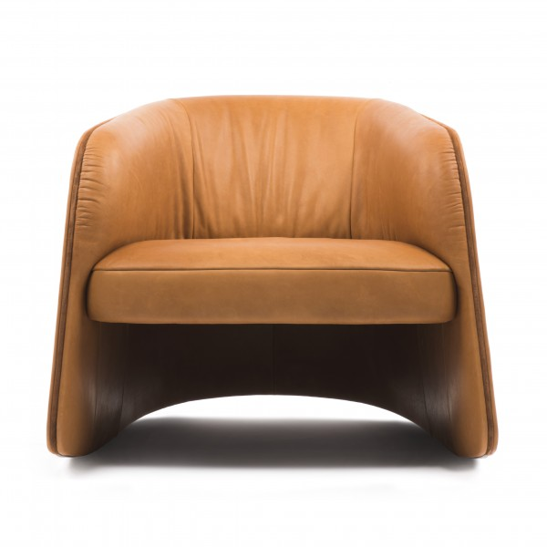 DS-900 armchair - Image 6