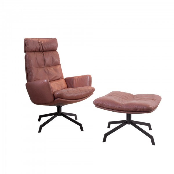 Arva Lounge Chair - Image 6