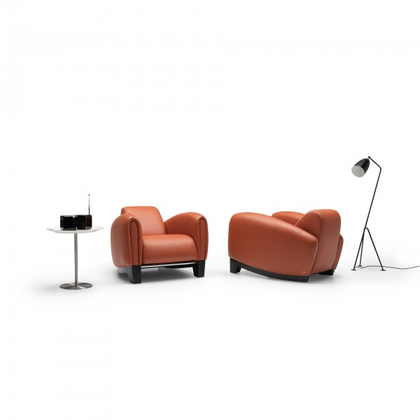 DS-57 armchair - Lifestyle