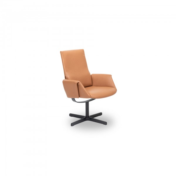 DS-343 /21 Chair - Image 1